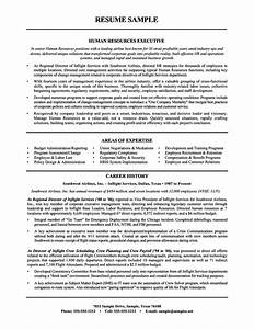 human resources resume objective http topresumeinfo With hr executive resume