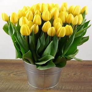 Tulpen In Vase : blumenstrau 50 gelbe tulpen von duftgem se auf ~ Orissabook.com Haus und Dekorationen