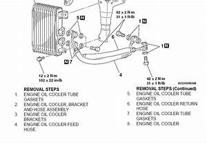 Oil Cooler Lines- Direction Of Oil Travel