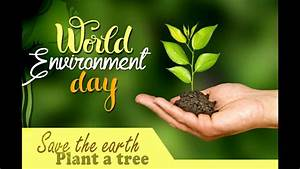 can you write eg in an essay essay on environmental pollution in hindi essay on environmental pollution in hindi