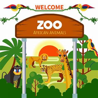 Animals Zoo African Vector Africa Illustration Background