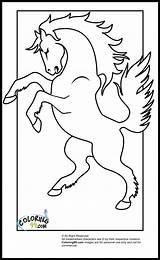 Horse Coloring Jumping Pony Ausmalbild Ausmalen Zum Ausmalbilder Another Comments sketch template