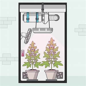 Best Way To Grow Weed Indoors  Kiss  Keep It Simple