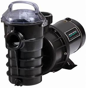 Pentair Dynii-n2-2 Hp Dynamo Two Speed Aboveground Pool Pump Without Cord  2 Hp