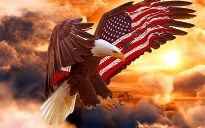 Eagle Flag Bald American Wallpapers Patriotic Eagles