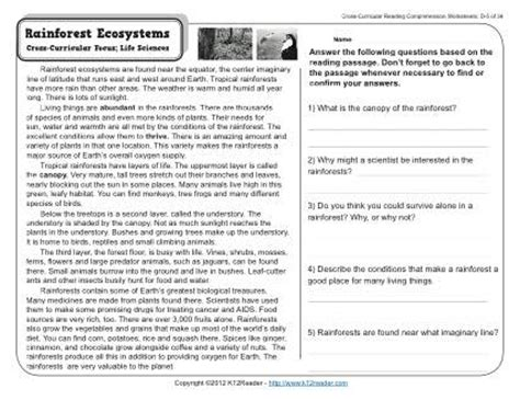 Rainforest Ecosystems  4th Grade Reading Comprehension Worksheet