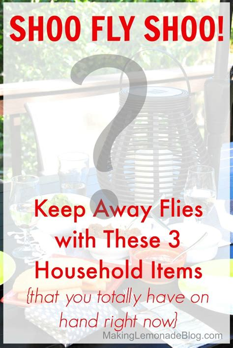 what is to keep flies away how to keep flies away with 3 things you have at home making lemonade
