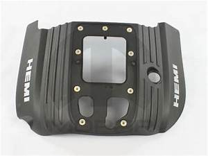 Find 53013718ac Cover