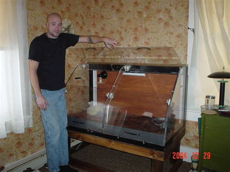 build enclosures  reptiles custom snake cages