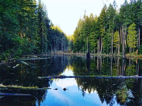 3 Beautiful Trails Around Redmond, Washington