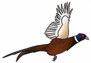 Pheasant Clip Art - ClipArt Best
