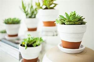 Painted Pots + Succulents offbeat + inspired