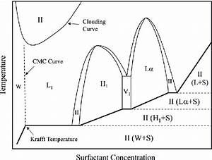 Schematic Phase Diagram Of A Binary Surfactant  Water