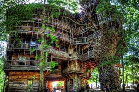 rumah pohon terbesar  dunia sakti desain