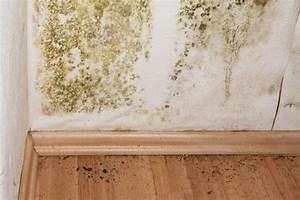Was Tun Gegen Schimmel Im Schlafzimmer : schimmel was tun beaufiful schimmel im schlafzimmer was ~ Michelbontemps.com Haus und Dekorationen