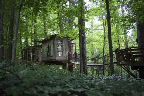 Tree House Airbnb Airbnb And Delta Team Up To Invite Travelers To Fly Global