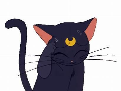 Sailor Moon Clipart Luna Transparent Animated Giphy