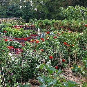 High Yield Gardening Strategy Renaissance Mama