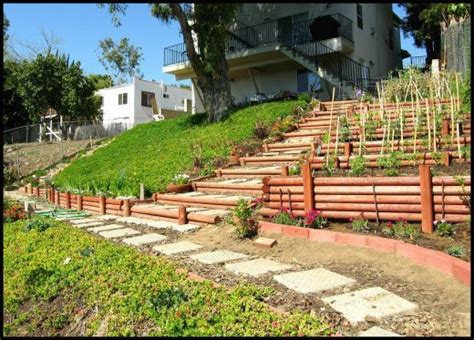 how to terrace a hill raised beds on a hill landscaping ideas pinterest raised beds fruit trees and grasses