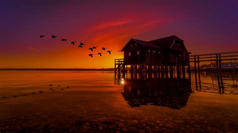 lake house  pier birds flying sunset scenery