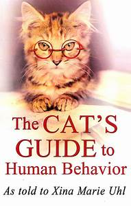 The Cat U0026 39 S Guide To Human Behavior Unravels How Cats Teach