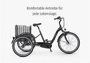 E Bike Von Prophete : die prophete e bikes mit aeg oder blaupunkt antrieb ~ Kayakingforconservation.com Haus und Dekorationen