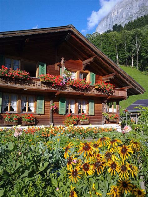 chalet suisse la beaut 233 simple du bois