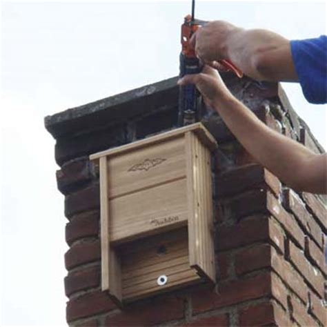 bat house installed on chimney how to remove bats from
