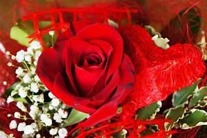 Herz Bilder Kostenlos Downloaden : blumenstrau rote rose mit herz lizenzfreie fotos bilder kostenlos herunterladen ohne ~ Eleganceandgraceweddings.com Haus und Dekorationen