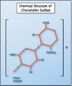 OARSI – Recommendation XVIII: Glucosamine and Chondroitin Work  Osteoarthritis Chondroitin