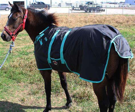 pony horse miniature foal winter donkey weanling 600d challenger blanket blankets