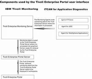Ibm Tivoli Monitoring Components