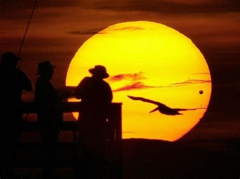 Venus Transit 2012—sun Show Will Be Last For A Century