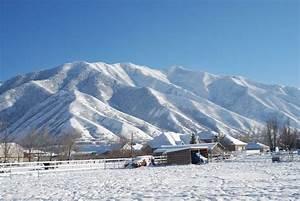 The greatest snow on earth - Mapleton News