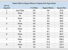 Survey Segment Tatami Mat to Sqm to Sqft 2 Blog