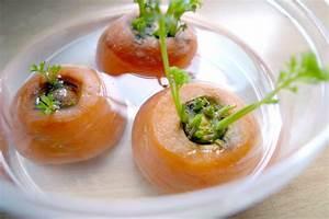 Creciendo brotes verdes de restos de zanahoria vida lucida for Creciendo brotes verdes de restos de