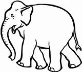 Elephant Coloring Elephants Young Colour Sheets Creative Printable Wildlife Animals Via sketch template