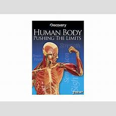 Human Body Pushing The Limits (dvd  Ws  2 Discs Dolby