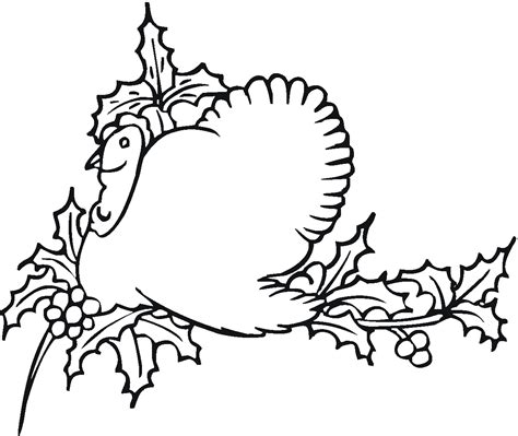 Turkey Coloring Pages by Free Printable Turkey Coloring Pages For