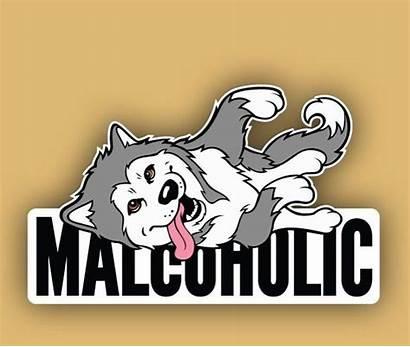 Pupper Alaskan Breeds Doggo Malamute Dog Horse
