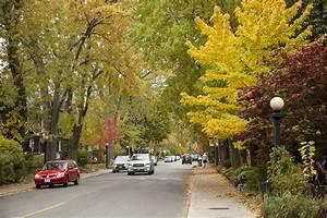 Prettiest Toronto Streets in Fall  Fall