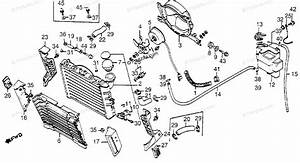 Honda Motorcycle 1986 Oem Parts Diagram For Radiator