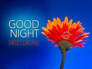 Good Night Wishes - Good Night Pictures – WishGoodNight.com