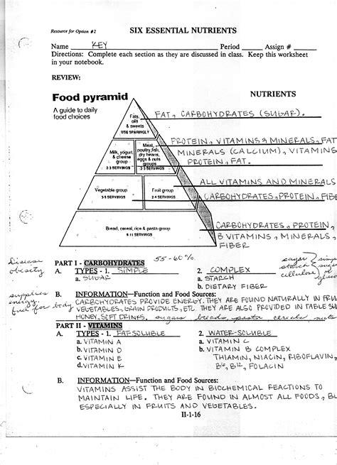 Easy Worksheet On Food Pyramid Goodsnyccom