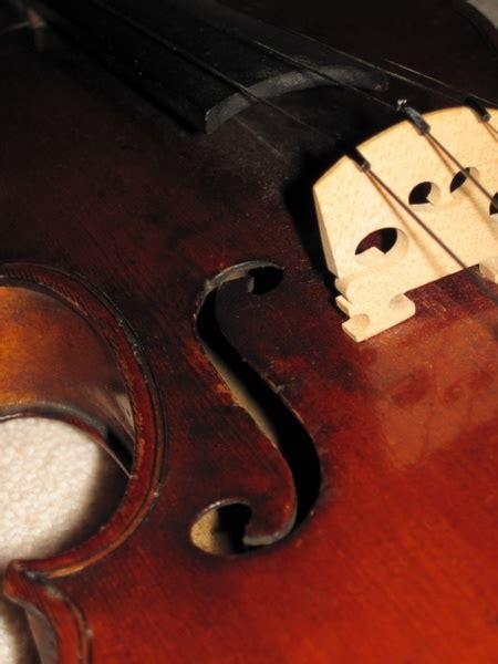 violin  stock     stock
