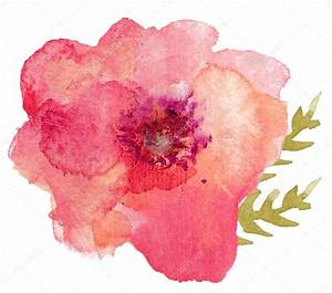 Single Watercolor Flower — Stock Photo © angiemakes #48217761