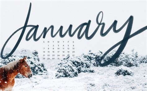 Free, Downloadable Tech Backgrounds For January!