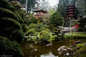 Backyard Japanese Tea Garden