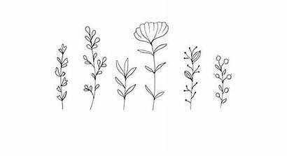 Aesthetic Desktop Drawings Drawing Line Laptop Flower