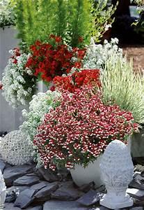Balkon Gestaltungsideen Pflanzen : ideen f r ihre garten gestaltung in rot ~ Lizthompson.info Haus und Dekorationen